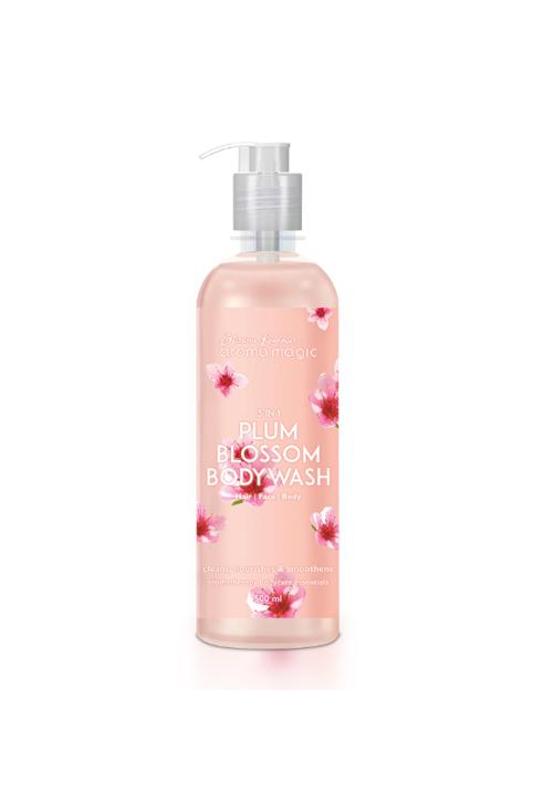 Aroma Plum Hand & Body Wash