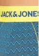 Jack and Jones Dorit Stripe Trunk